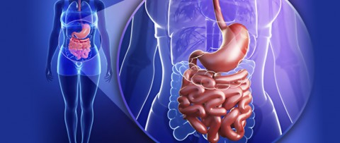 What Should you Eat When you have Ulcerative Colitis?