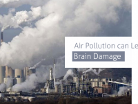 Air Pollution can Lead to Brain Damage
