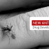 New Anti-Malaria Drug Developed